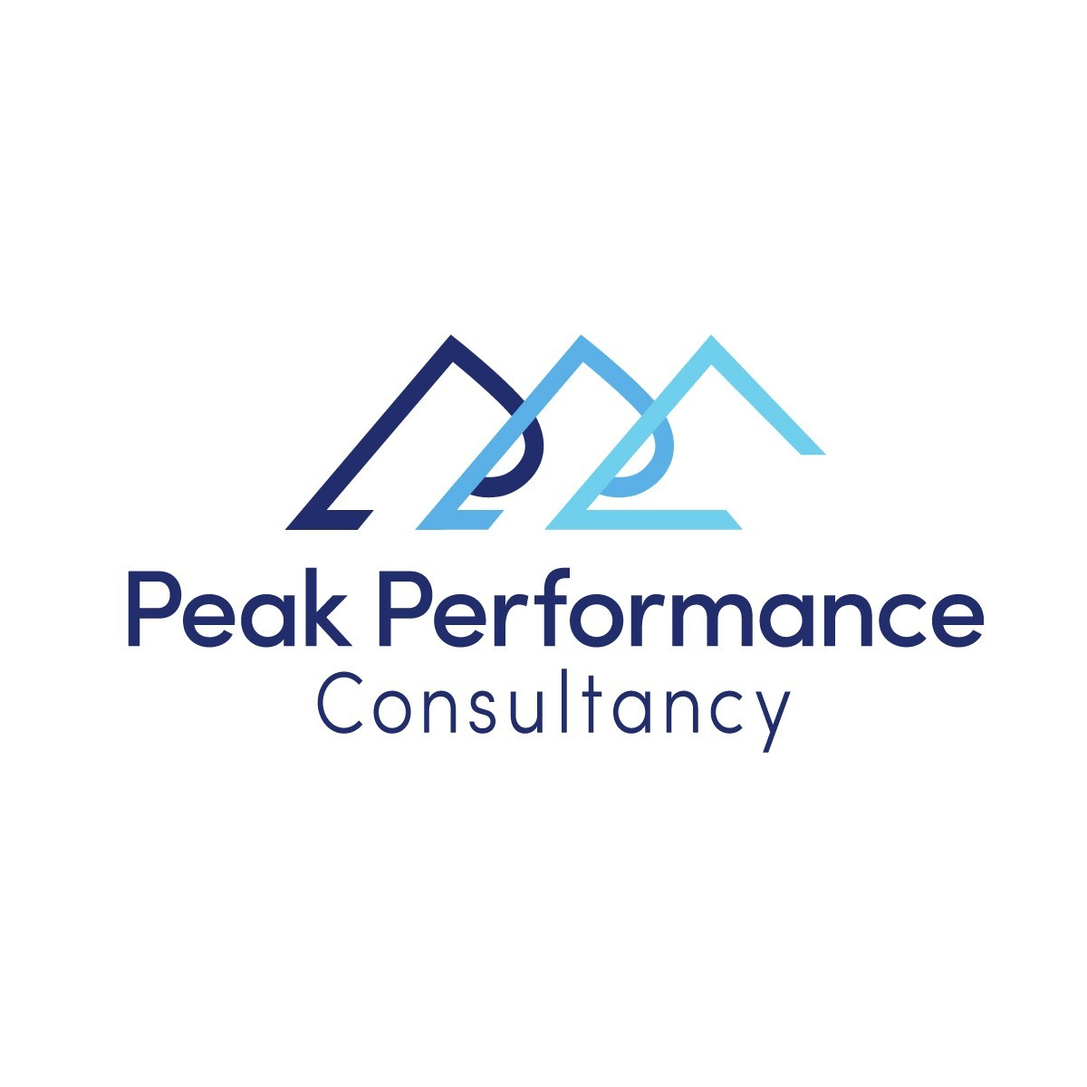 Peak Performance Consultancy